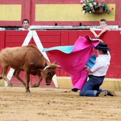 BECERRADA DES PEÑAS 2011
