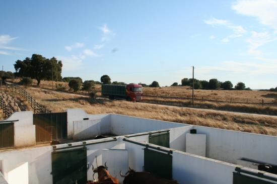 Le camion arrive chez Santa Maria