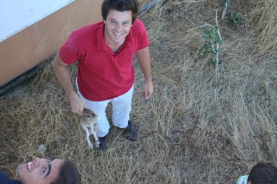 Amusé,le frére de Brito PAES  à sauvé le lapin des cornes du Toro